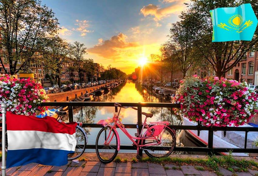 Виза в Голландию: какие нужны документы для ее оформления?