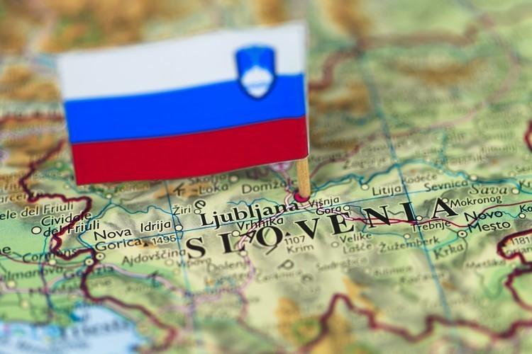 Виды страховок в Словению